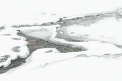 MvdR-20091103-111924-01886